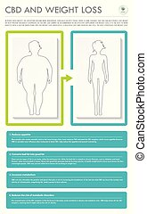 CBD and Weight Loss vertical business infographic