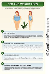 CBD and Weight Loss vertical textbook infographic