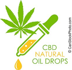 Cbd natural oil vector icon isolated on white background