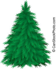Coniferous tree isolated. Vector illustration on white background