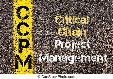 ccpm, 頭字語, ビジネス