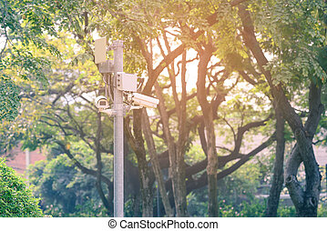 CCTV Security camera for monitoring events in urban garden.