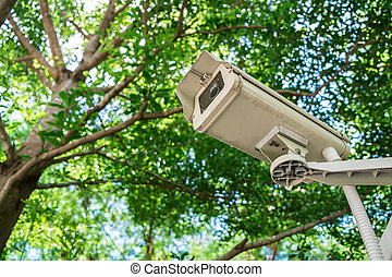 CCTV under trees in the park