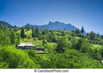 Ceahlau mountain landscape in Romania. summer view