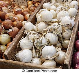 cebola, mercado