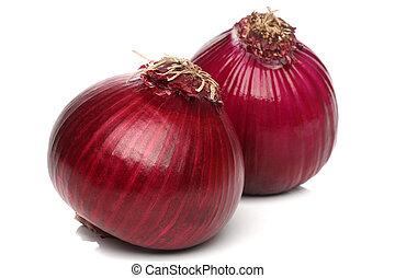 cebola vermelha, bulbo, isolado, branco, fundo