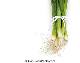 cebolas verdes