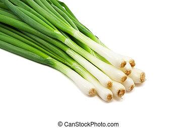 cebolla, verde