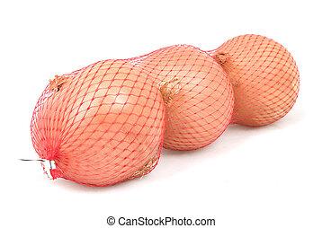 cebule