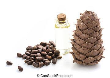 Cedar cone, branches and cedar oil on white. Close up. Copy space.