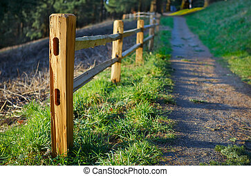 Cedar Picket fence on hill