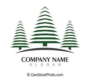 Cedar tree Logo template