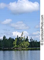 Scenic Island on a Remote Wilderness Lake