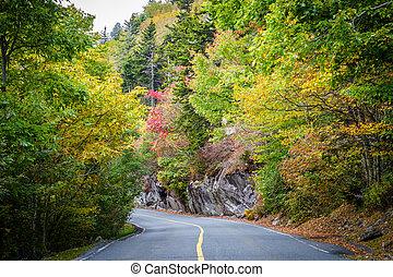 cedo, cor outono, ao longo, a, estrada, para, avô, montanha,...