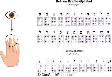 cego, alfabeto, pessoas., braille., ilustração, vetorial,...