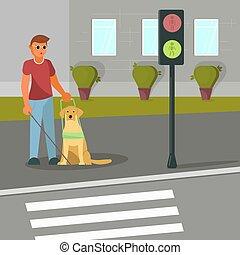 cego, cão, ilustração, vetorial, guia, homem