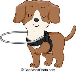 cego, couraça, cão, ilustração