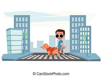 cego, menino, cruzes, cão, guia, estrada