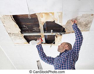 ceiling., ember, forma, takarítás