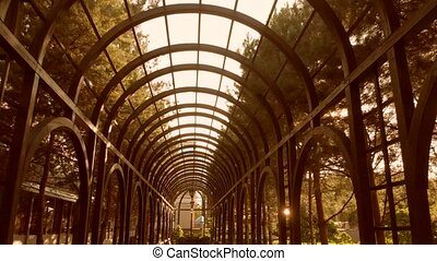 Ceiling of a wooden tunnel archway.