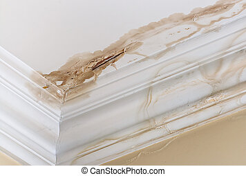 Peeling paint on an interior ceiling a result of water damage caused by a leaking pipe dripping down from upstairs a result of substandard plumbing completed by an unqualified plumber. A common house insurance claim.