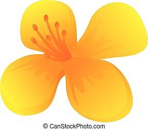 Celandine plant flower icon. Cartoon of celandine plant flower vector icon for web design isolated on white background