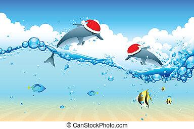 celebrar, delfín, navidad