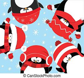 celebrar, pingüinos, navidad