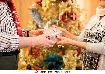 Celebrating lover with Christmas