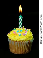 Celebration Cupcake with Lit Candle