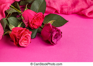 Celebratory background of roses lying on a pink surface, close-up