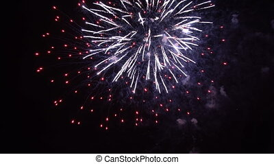 Celebratory fireworks in the night sky