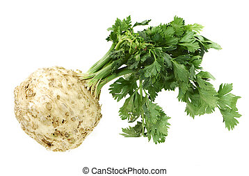 Isolated celery - a healthy root vegetable