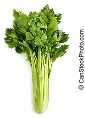 celery isolated