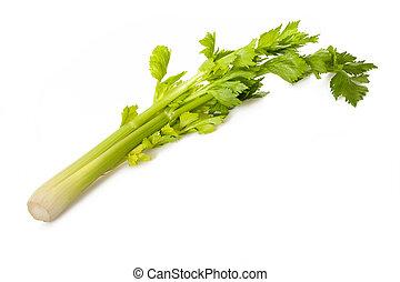 Celery sprig isolated on white background