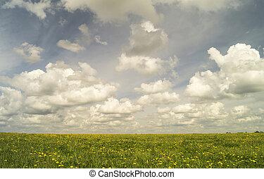 celestial, paisagem, ligado, prado verde, com, erva