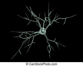 Cell body of a Neuron - 3D rendering of a neuron in the...