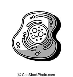 cell, isolerat, struktur, ikon