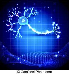 cell, nerv, neuron, anatomi