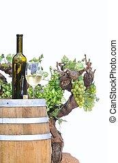 cellar., ワイン