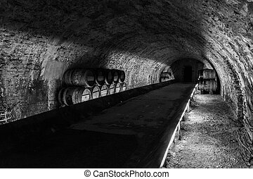 cellar in white and black with Wine barrels