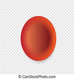 celler, blod, röd