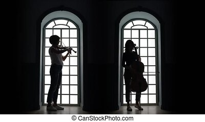 Cellist and violinist playing a musical composition....