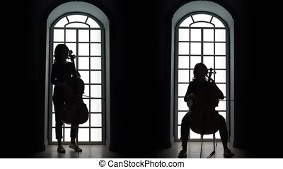Cellist playing a musical composition in the evening against...