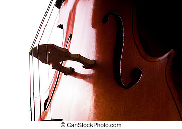 Cello on a white background.