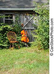 cello, outdoors., houten