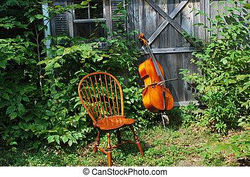 cello.