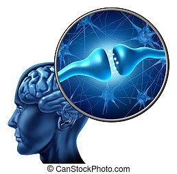 cellula, nervo, synapse, recettore, umano
