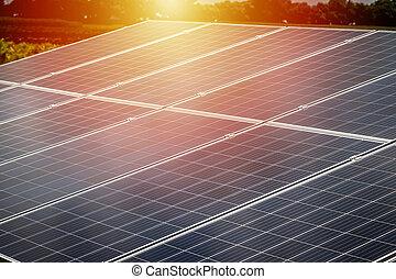cellule, énergie propre, solaire