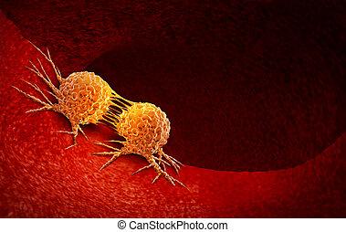 cellule, cancer, division